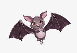 骄傲的蝙蝠