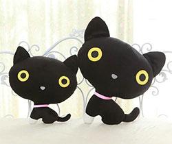 小黑猫送来的