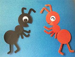 红蚂蚁和黑蚂蚁