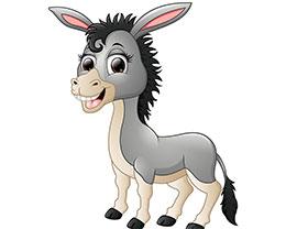 驴子的理想