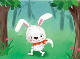 小白兔迷路了
