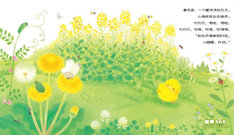 小雞球球和向日葵