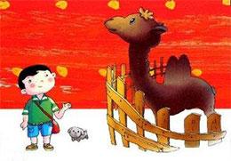 小骆驼找妈妈