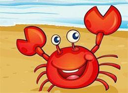 小螃蟹,走自己的路就好啦!
