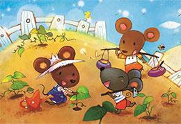 今天,向小田鼠学习