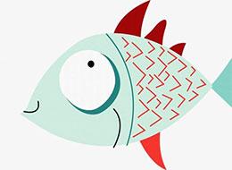 小银鱼冲浪