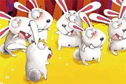 不一样的兔子
