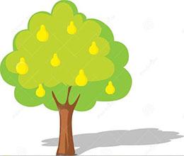 能吸污水的梨树