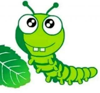 毛毛虫和小甲虫