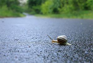 铲车与蜗牛