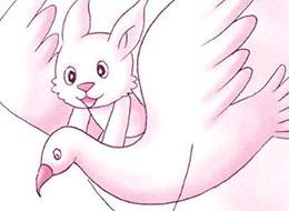 想飞的兔子