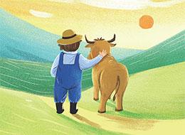 野花谷的牛