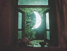 月亮的旅行