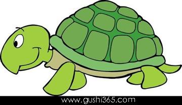 会想办法的小乌龟
