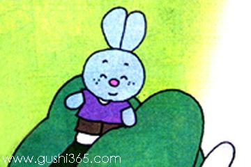 图画书里的兔子