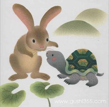 烦恼的小兔子