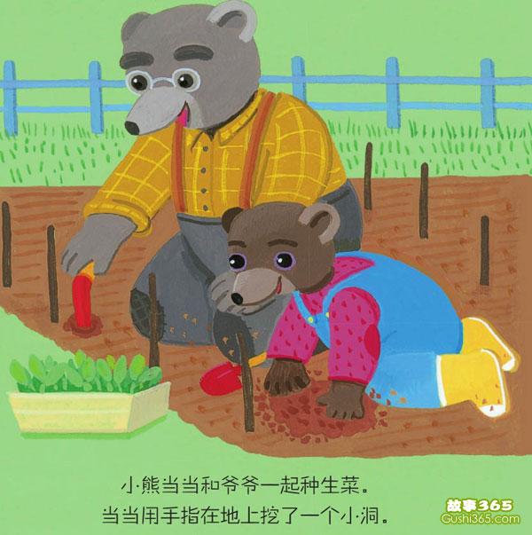 小熊当当学种菜