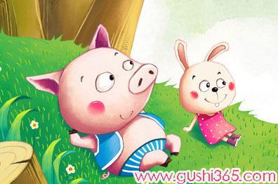 胖小猪和小白兔