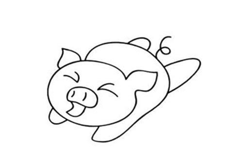"""""""善跑""""的小猪"""