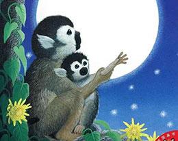 想要月亮的猴子