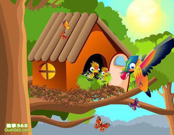 纸盒人_小鸟的新家 - 儿童小故事 - 故事365