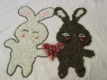 小兔找蘿卜