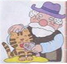 爷爷的虎斑猫