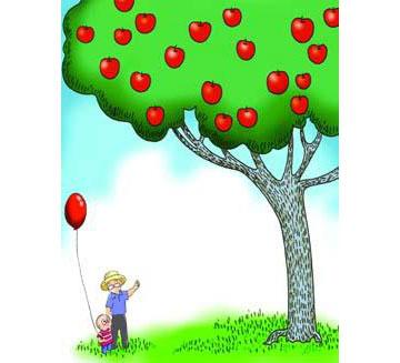 苹果树,感人故事