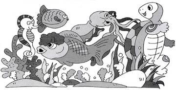 珊瑚学堂的故事