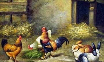 鸡一屁股坐地上了