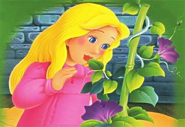 一个豆荚里的五粒豆