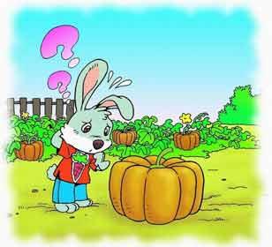 小兔搬南瓜