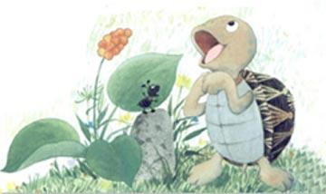 小乌龟:我想唱只歌儿给你听