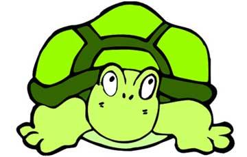 小乌龟的两个半愿望