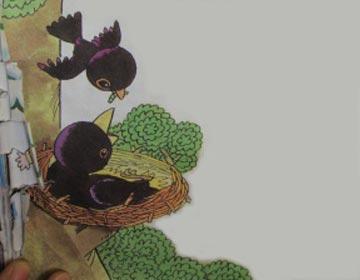 小乌鸦爱妈妈