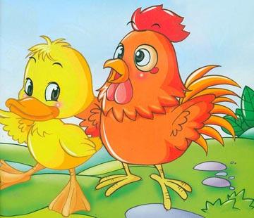 小鸡和小鸭