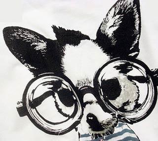 小狗配眼镜