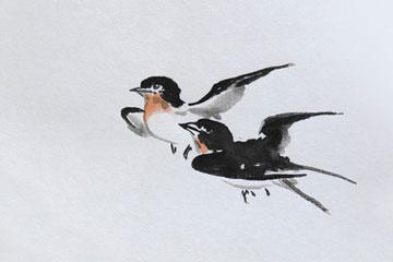 小燕子万里飞行记