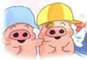 猪哥哥和猪弟弟